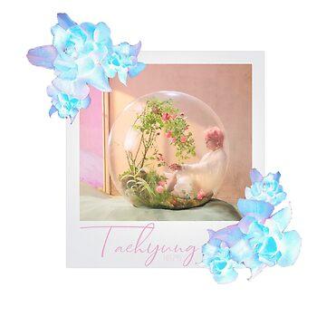 LY Answer - Taehyung Smeraldo Polaroid by sylnae
