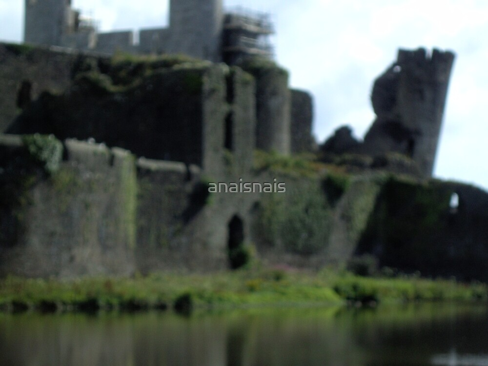 Caerphilly Castle - Wales by anaisnais