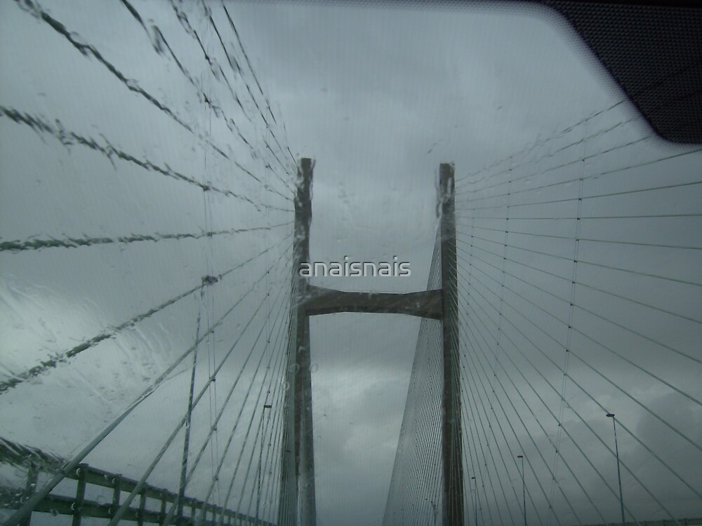 Severn crossing structure by anaisnais