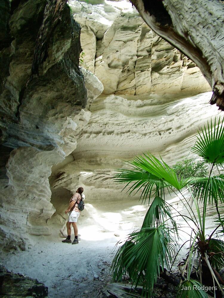 Carnarvon Gorge Queensland by Janette Rodgers