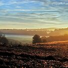 Early Rays by relayer51