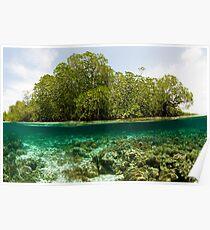 Raja Ampat Mangroves Poster
