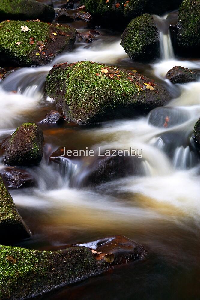 Padley Cascades by Jeanie