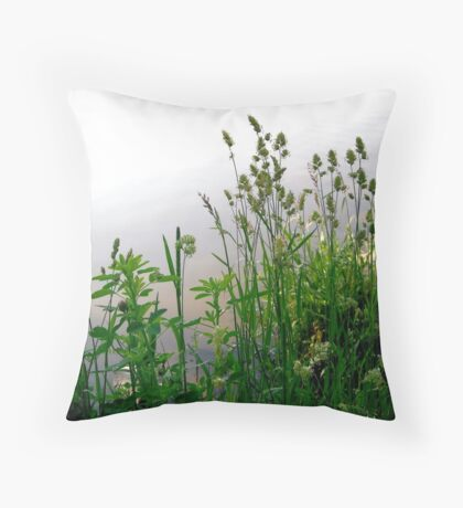 Grass on the banks of the Rideau River, Ottawa Throw Pillow