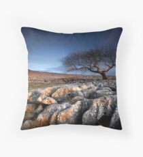 Limestone Pavement Throw Pillow
