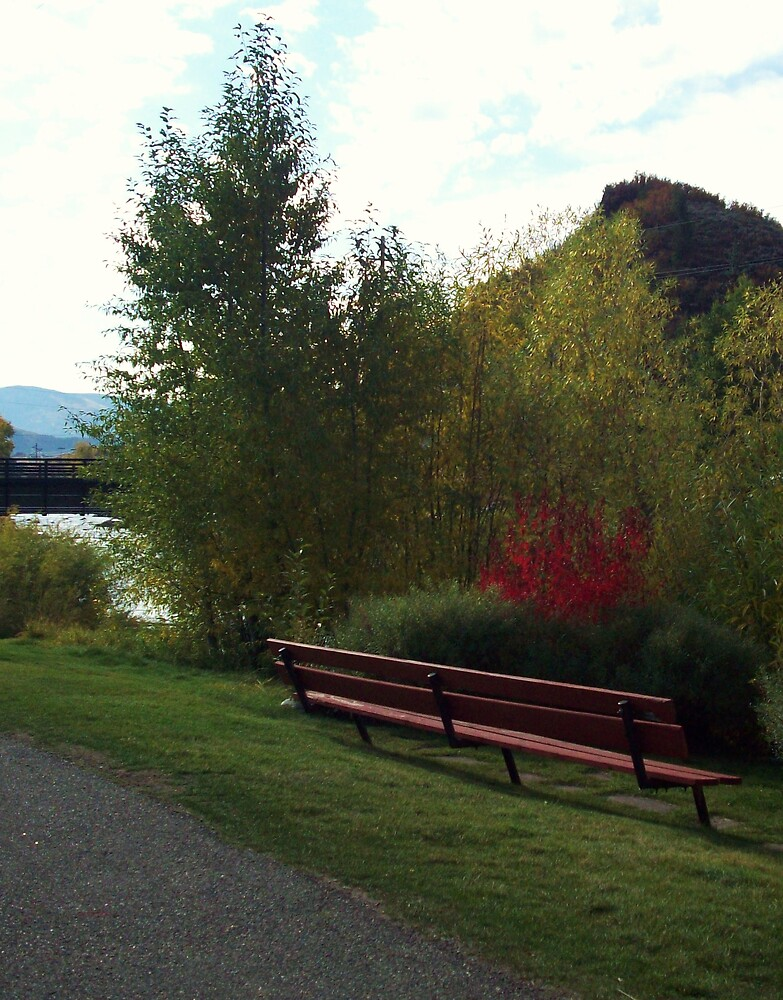 Park bench in the Fall by Camilla Wall