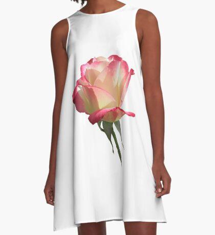 wunderschöne, pinke Rose, Rosen, pink, Blume A-Linien Kleid