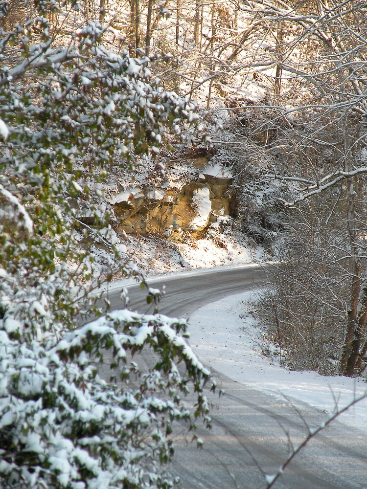 Snowy Country Road by Nokie