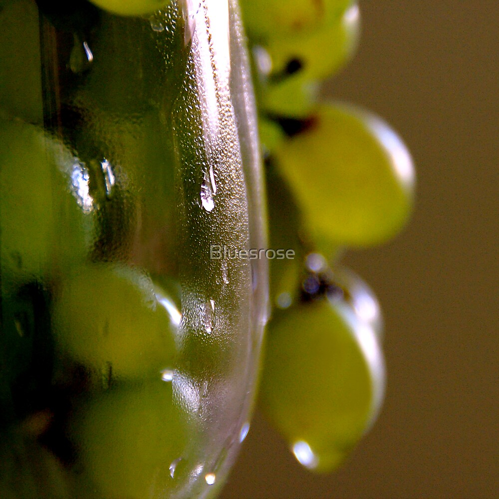 October grapes. II by Bluesrose