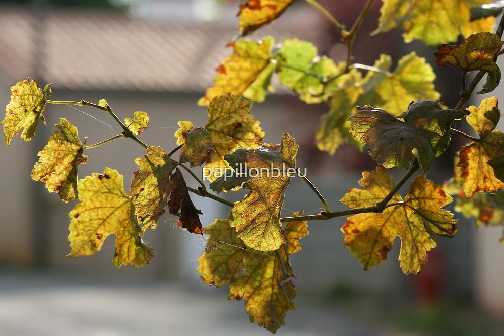Turning Leaves by Pamela Jayne Smith