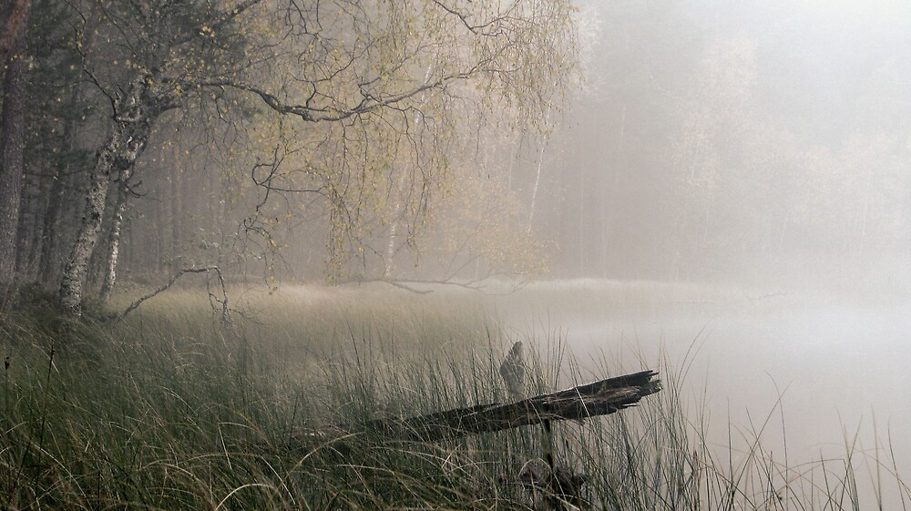 2.10.2009: Autumn Morning II by Petri Volanen