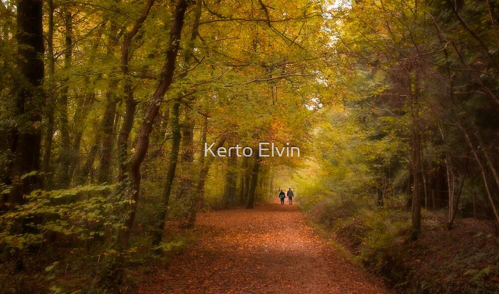 Walk by Kerto Elvin