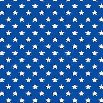 Blue with White Stars Leggings and Skirt Womens Super Hero Costume by hustlagirl