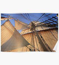 Morning Sails Poster