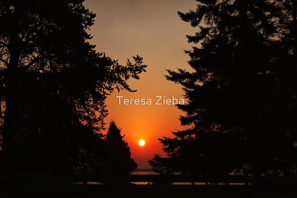 Framed Sunset by Teresa Zieba