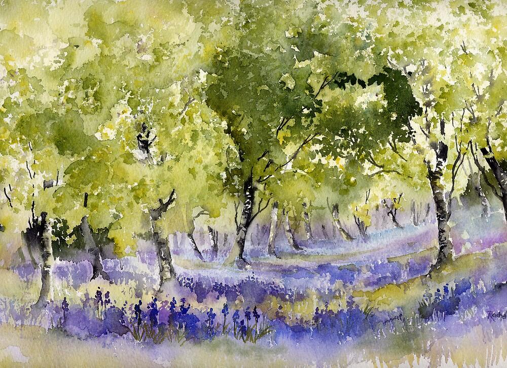 The Bluebell Wood by artbyrachel