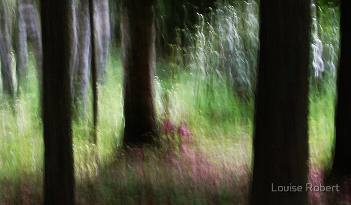 Fairy Tale Forest by Louise Robert