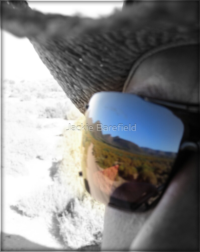 Reflected ant hill by Jackie Barefield