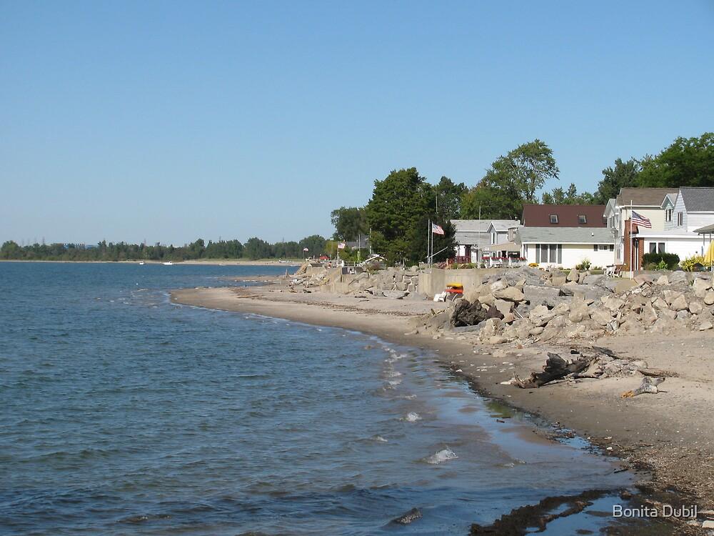Beach Cottages by Bonita Dubil