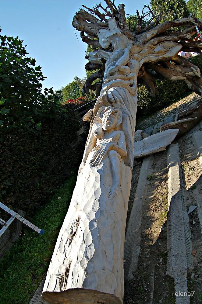 a nice piece of wood by elena7