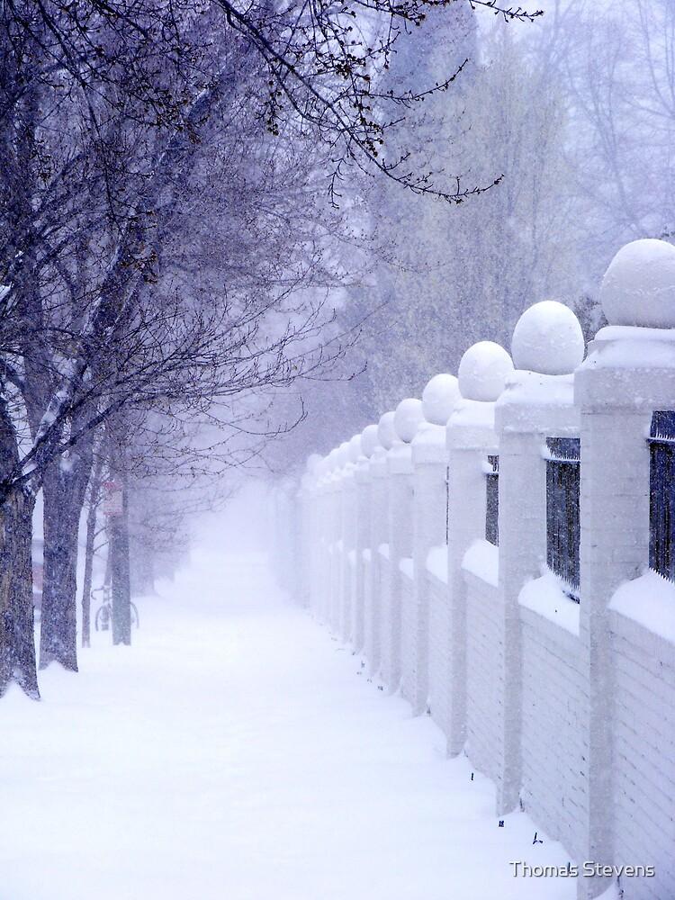 Spring Snowstorm by Thomas Stevens