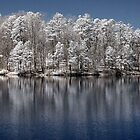 Infrared Lake by L.D. Franklin