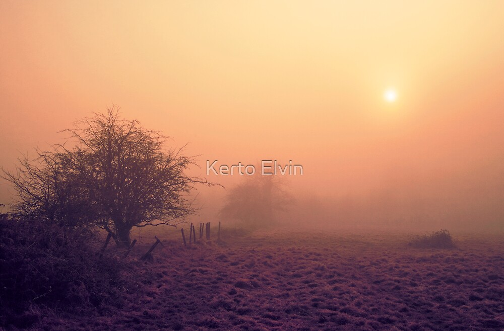 Misty Sunset by Kerto Elvin