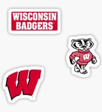 University of Wisconsin Minis Sticker