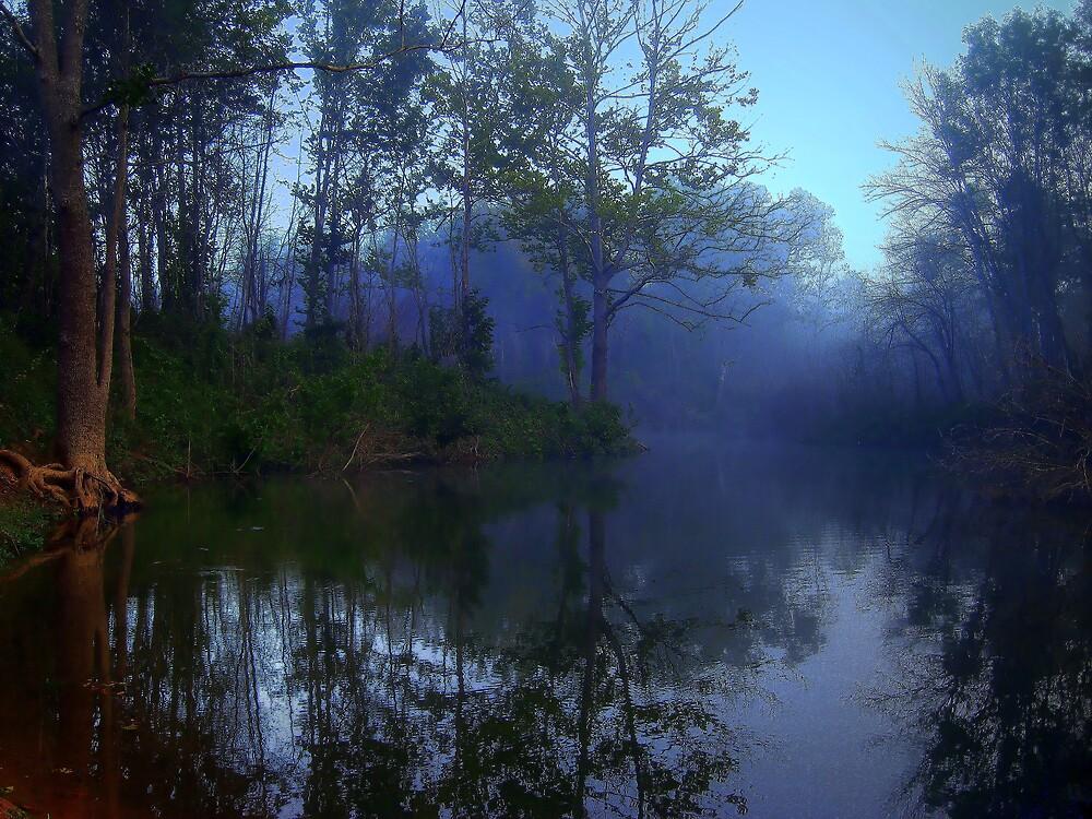 Sweet September Mist by BransonPhotos