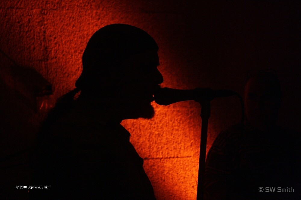 Singer In The Shadow  by © Sophie W. Smith