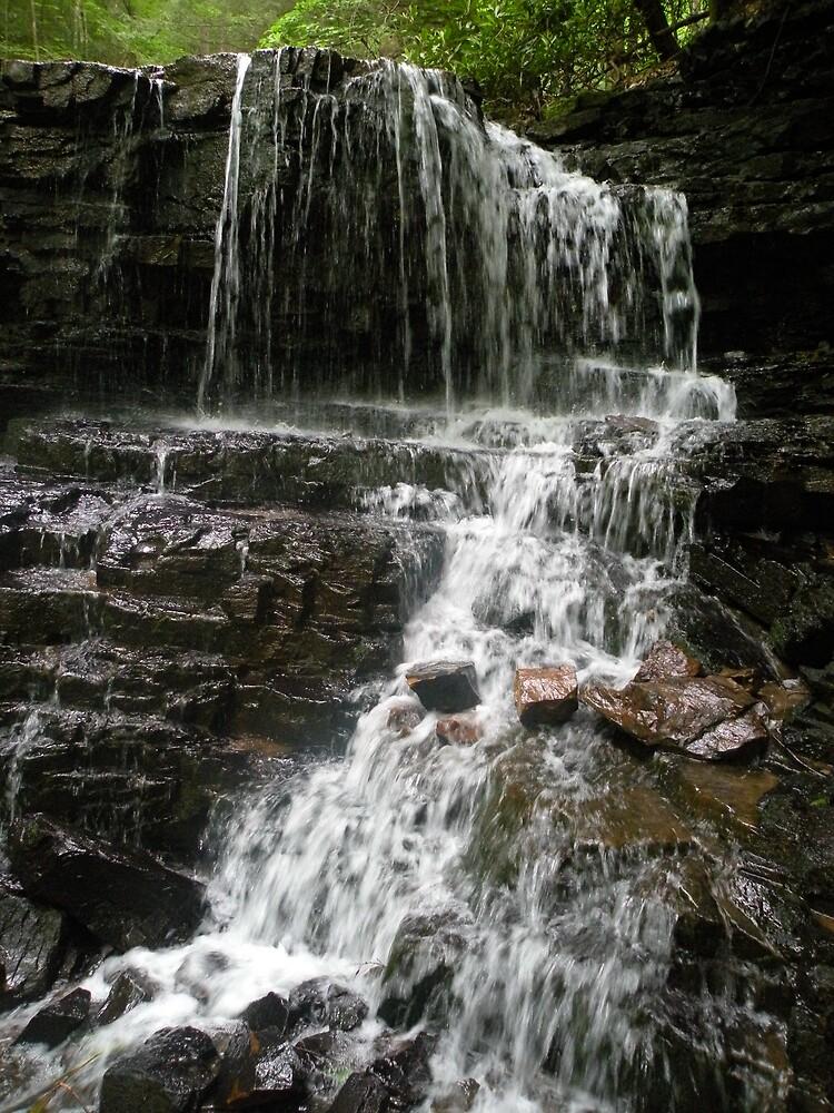 Laurel Falls by Nokie
