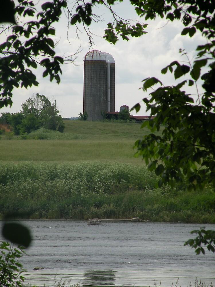 Tennessee Farmland by Nokie