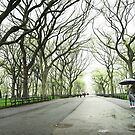 Rainy Day Romance - New York City by Vivienne Gucwa