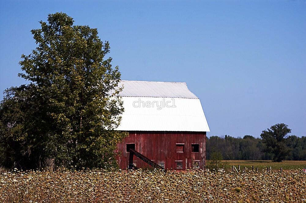 Red Barn by cherylc1