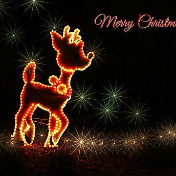 Merry Christmas by PaulaMcManus