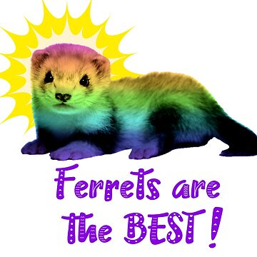 Ferrets Are The Best! by CeeGunn