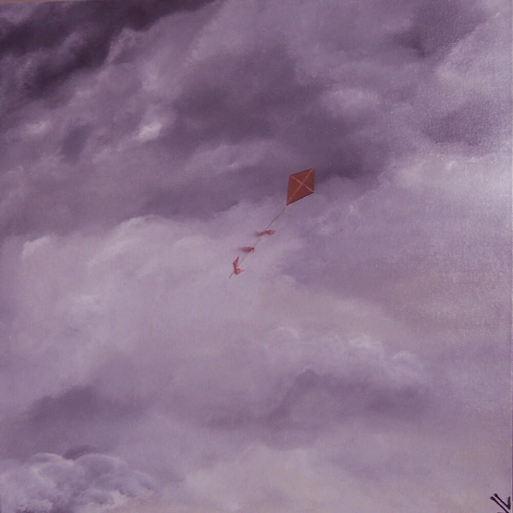 Flying by Jenny Leake