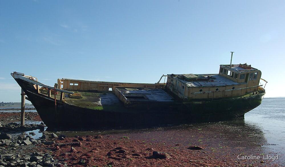 Old boat by Caroline  Lloyd