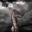 Emu I by carol brandt