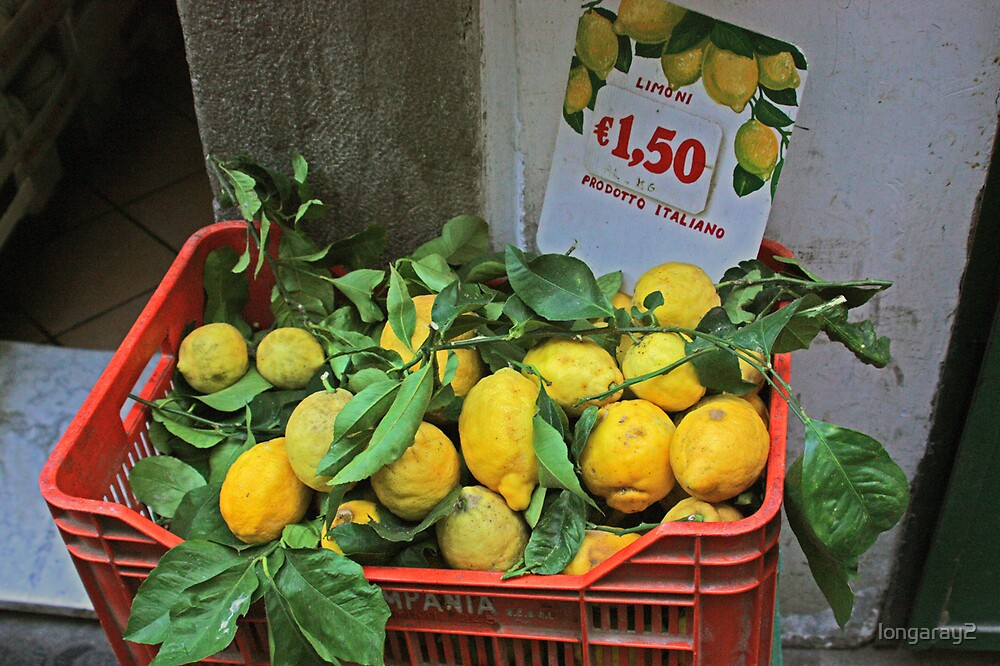 Large Italian Lemons by longaray2