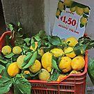 Large Italian Lemons by longaray2