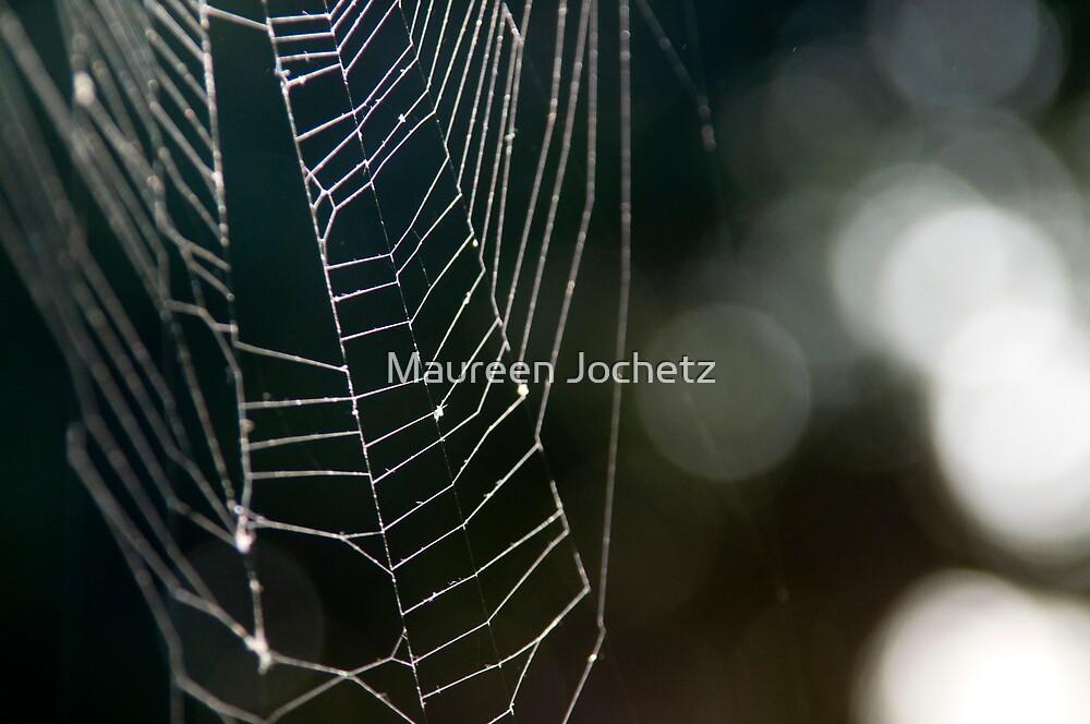 Arachne's Loom by Maureen Jochetz