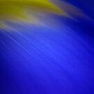 Iris II by Kitsmumma