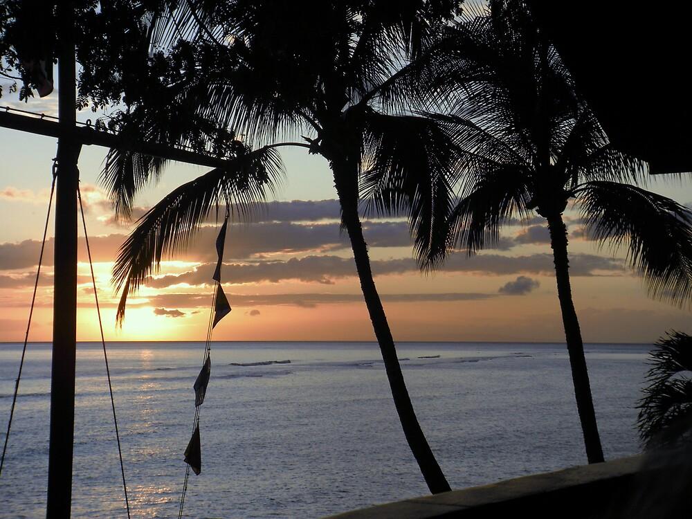 Maui Sunset by cjohnson2010