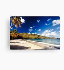 Magens Bay , St. Thomas, US Virgin Islands Canvas Print