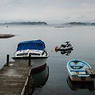 Along the shore on Lauttasari  by frommyhorizon