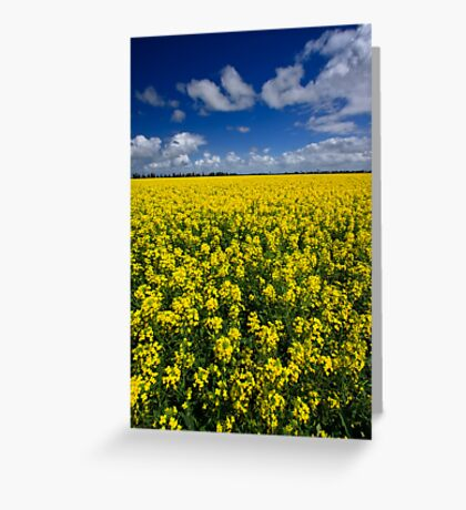 As Far As The Eye Can See Greeting Card
