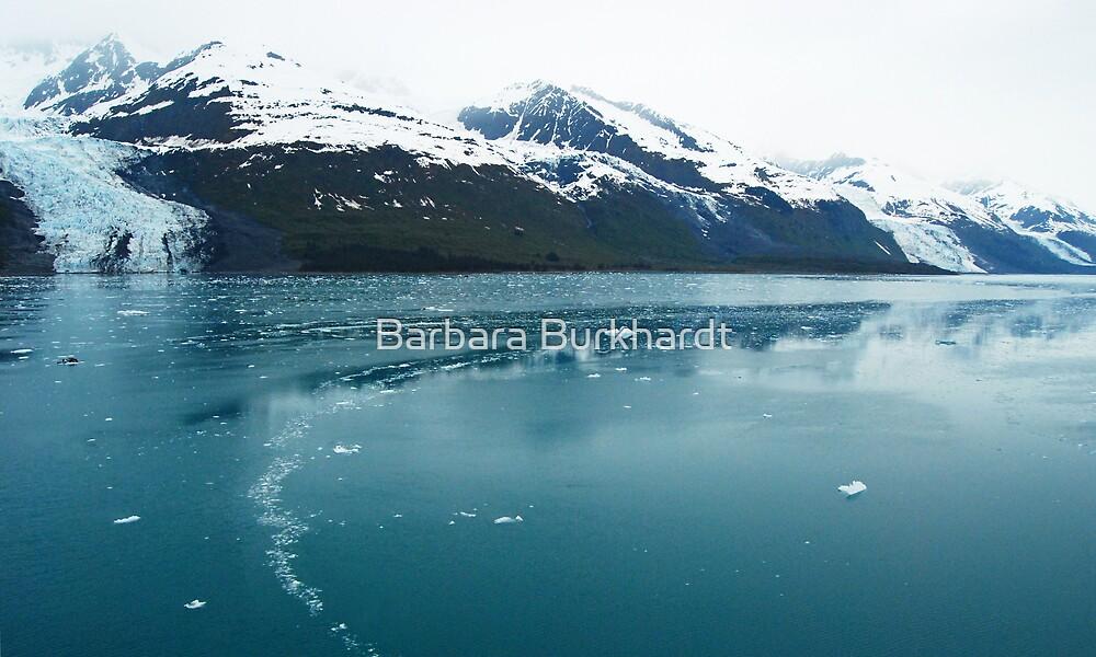 The Chill of Ice -~ Glacier Bay  ALASKA by Barbara Burkhardt