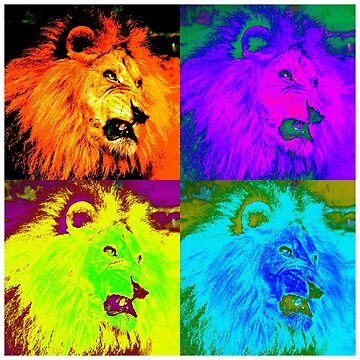 African Lion - Pop Art Design by Chunga
