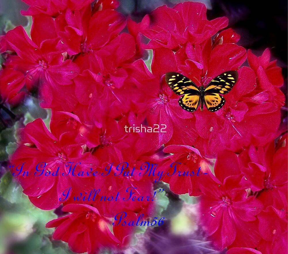 I Will Not Fear by trisha22